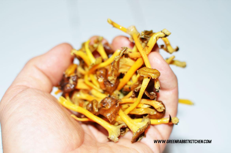 Vegan Chanterelle Mushroom Crostini 01